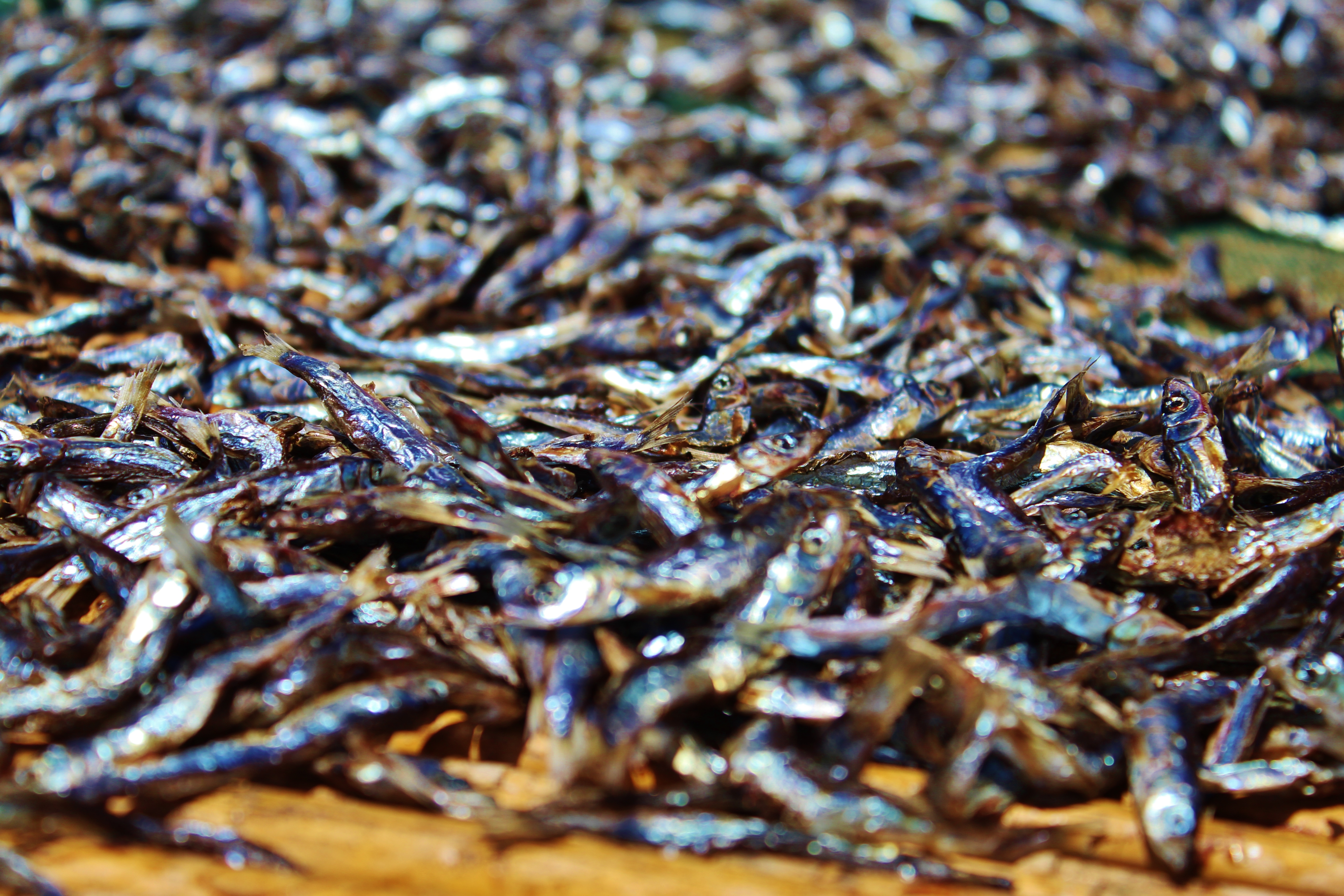 Usipa - little dried minnows with salt. Kind of tasty, actually