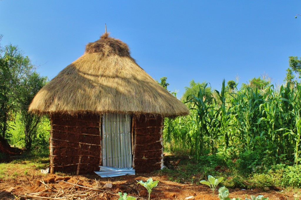 A home in Siaya district with a thatch roof. Thatch roofs are terrible at their job - they let in rain and need to be replaced every few months